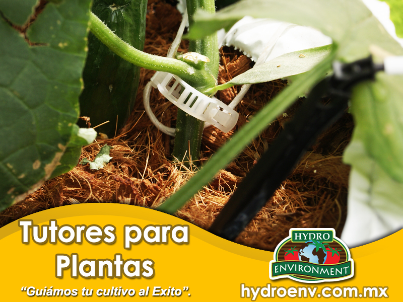 Tutores Para Plantas Hydro Environment