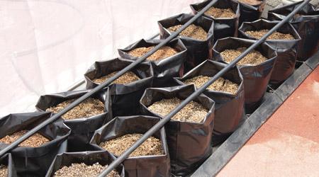 Viveroplantilandia breve guia de siembra - Sistema de riego por goteo automatizado ...