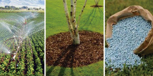 Opiniones de fertilizante for Un fertilizzante