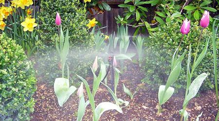 Aprendamos horticultura riego for Sistema de riego por aspersion para jardin