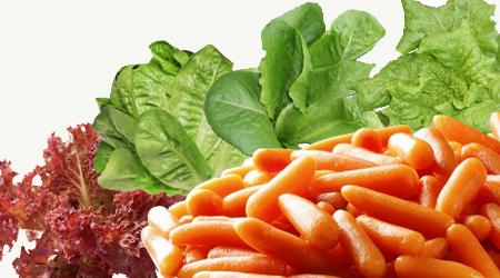Im genes de hortalizas imagui - Semillas de frutas y verduras ...